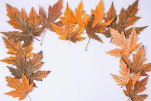 hösten bakgrund