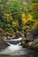 Wilson Creek hösten foto