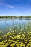 lake perty. suwalki landskapspark.
