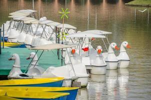rader med vattencykler i sjön foto