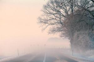 kall vinter foto