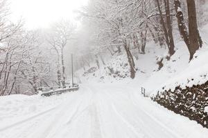 vinter i södra Schweiz