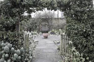 lands trädgård på vintern foto