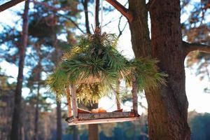 handgjord fågelmatare på vintern foto