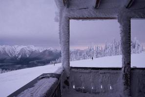 vinter i olympisk nationalpark foto
