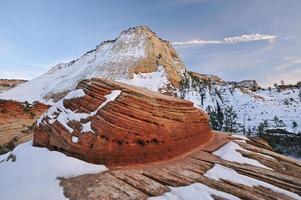 vinter, zion nationalpark foto