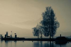 sjö dimma morgon foto