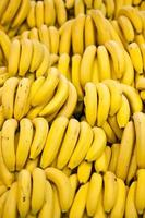 gula bananer foto