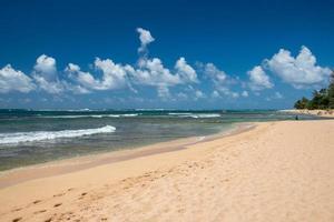 människor som har kul på hawaii beach foto