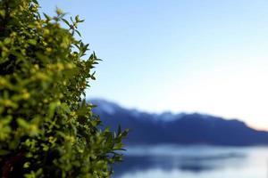 sjön Genève