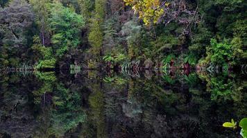 spegel sjö i foto