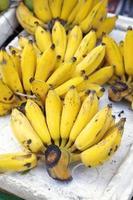 många asiatiska bananer foto