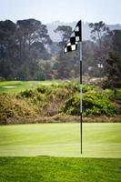 flagga på att sätta grönt foto