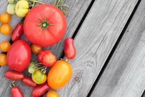 tomater. foto