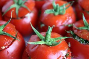 fyllda tomater foto