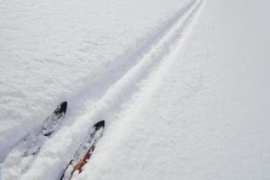 spetsen på skidorna i skidspåret foto