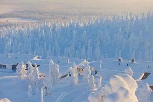 vackra livliga soliga skandinaviska vinterlandskap i skidorten foto