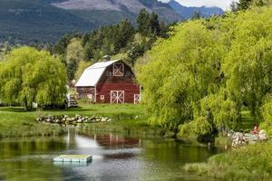 brinnon washington barn vid dammet foto