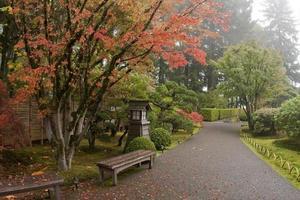trädgårdsvägar foto