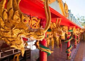 asiatiska drakar foto