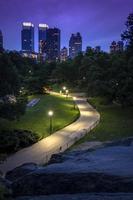 new york skyline sett från central park