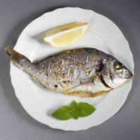 dorado fisk foto