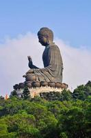 stor buddha foto