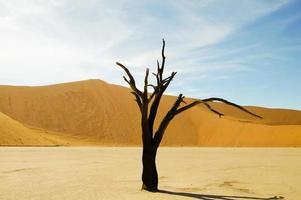 sossusvlei - namibia foto