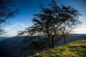 sierra räddat. bland burgos, alava och vizcaya. Spanien. Europa. foto