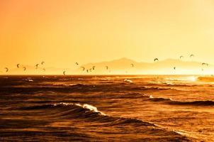 kitesurfing vid solnedgången foto