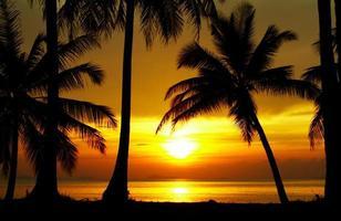 solnedgång ekvatorn foto