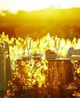närbild romantisk middag foto