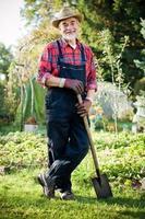 trädgårdsmästare foto
