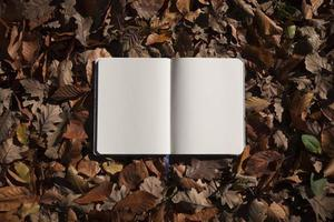höstlöv och tom anteckningsbok foto