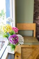 dekorativ blomma