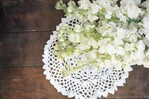 vita blommor foto