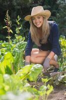 söt blond trädgårdsskötsel på solig dag foto