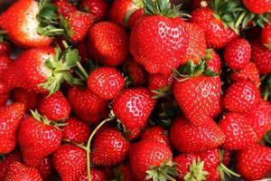 närbild jordgubbar foto