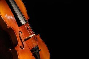 violin på nära håll foto