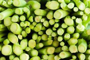grönkål på nära håll foto