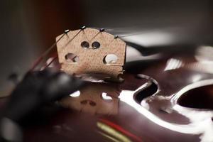 violin makro (närbild) foto