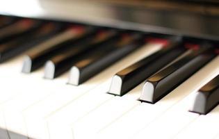 närbild, piano keybaord foto