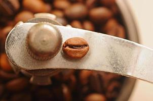 närbild kaffebönor foto