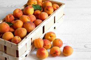 hela orange aprikoser med röd rodnad. foto