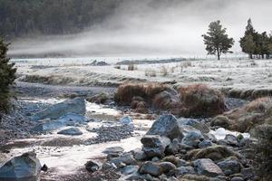 morgondimma och Matheson River, Nya Zeeland foto