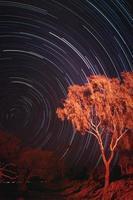 startrail i outback australien foto