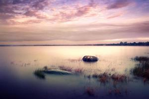 hjort sjö foto
