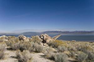 antilope Island State Park i Utah foto