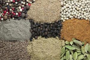 samling av olika naturliga kryddor som bakgrund foto