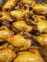 hong kong stil ånga kyckling och anka foto